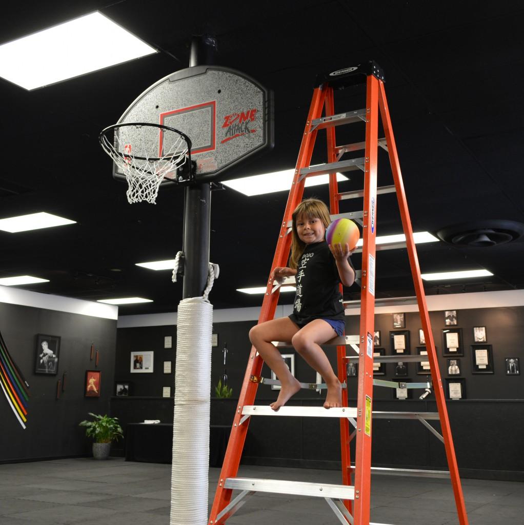 Dojo Basketball